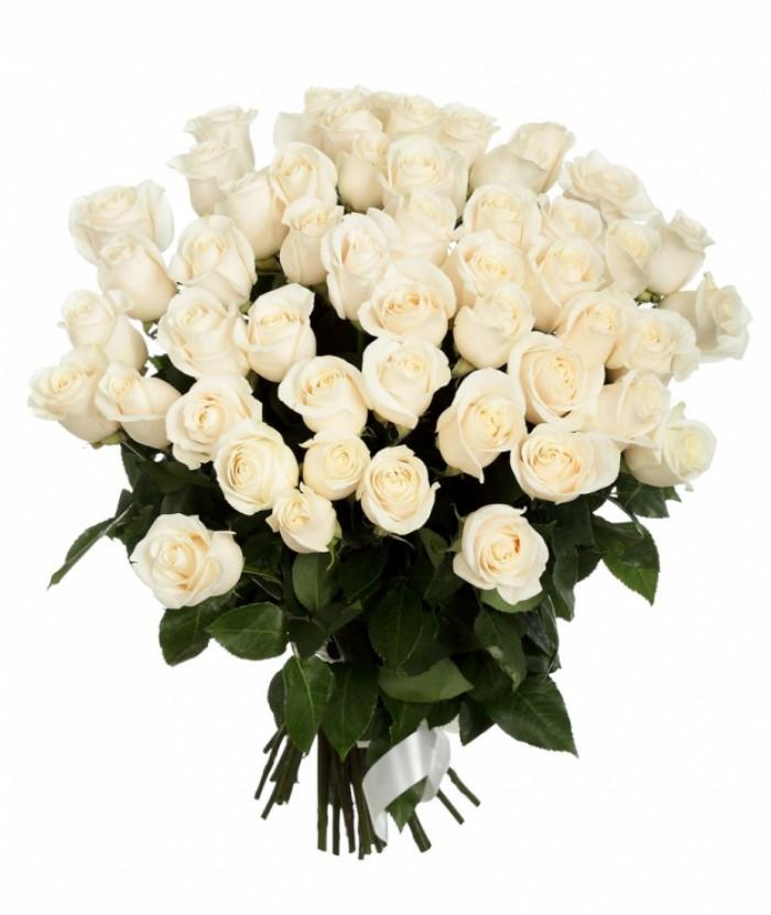 Увеличить - МОНО-букет из 51 и 101  высокой сортовой белой элитной розы