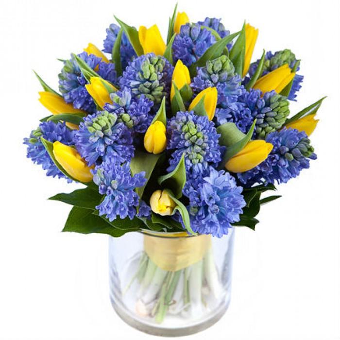 Увеличить - Гиацинты и тюльпаны