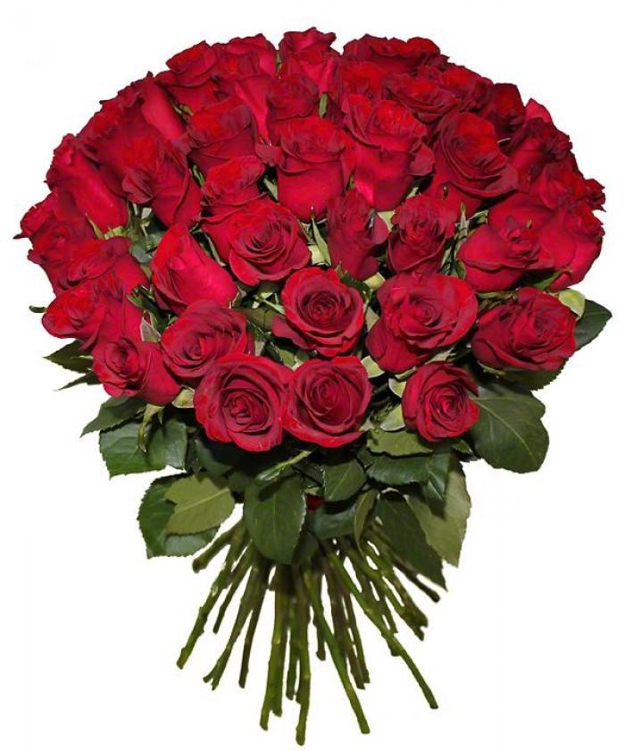 Увеличить - МОНО-Букет 51 и 101 элитная красная роза