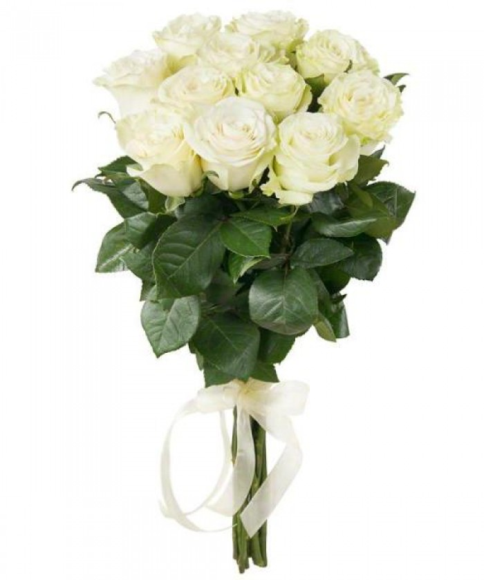 Увеличить - МОНО-букет 11 высоких белых элитных роз